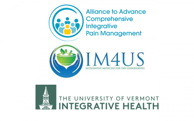 Bolstering Integrative Pain Workforce through Scholarships to UVM Conference